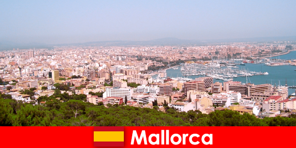 Une vie de retraités à Majorque