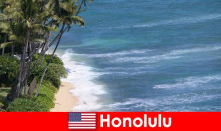 Découvrez les meilleurs d'Honolulu en famille