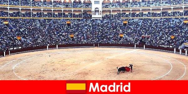 Les festivals traditionnels à Madrid surprennent tous les étrangers