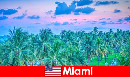 Miami nature à couper le souffle avec une grande nature tropicale