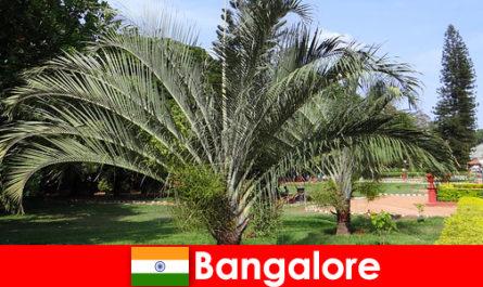Le climat agréable de Bangalore toute l'année vaut le détour pour chaque étranger