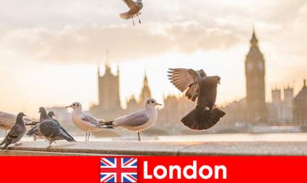 Lieux à visiter à Londres pour les visiteurs internationaux d'origine étrangère