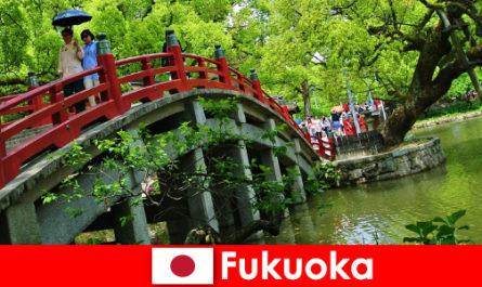Pour les immigrants, Fukuoka est une atmosphère détendue et internationale avec une qualité de vie élevée
