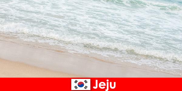 Jeju, avec son sable fin et ses eaux claires, est un endroit idéal pour des vacances en famille sur la plage