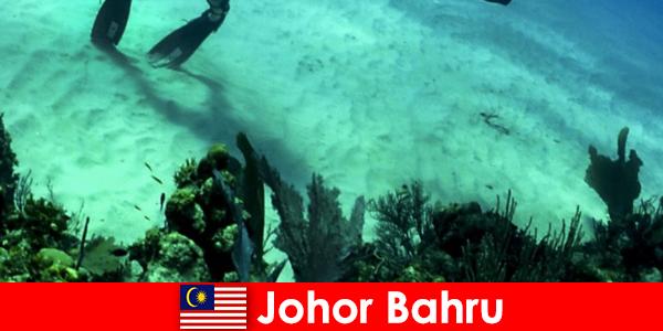 Activités d'aventure à Johor Bahru Plongée, escalade, randonnée et bien plus encore