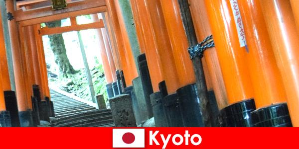 Kyoto, le village de pêcheurs au Japon offre diverses attractions de l'UNESCO