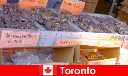 Toronto et sa gastronomie particulièrement diversifiée ne laisseront aucun voyageur affamé