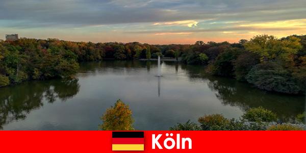 Voyage dans la nature à travers la forêt, la montagne et les lacs dans les parcs naturels de Cologne Allemagne