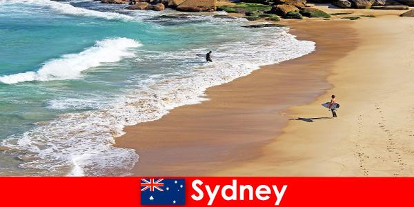 Les surfeurs profitent du coup de pied ultime à Sydney en Australie