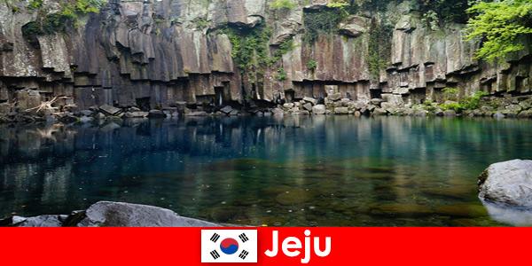 Voyage exotique sur de longues distances dans le magnifique paysage volcanique de Jeju en Corée du Sud