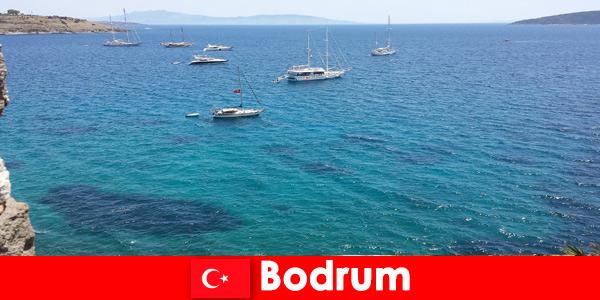 Vacances de luxe pour étrangers dans les magnifiques baies de Bodrum Turquie